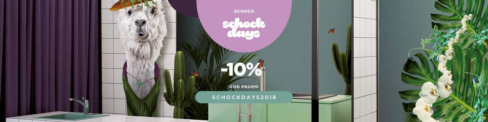 SCHOCK Days 2018